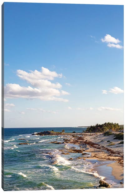 Cozumel Mexico Sea Shoreline Vertical Canvas Art Print