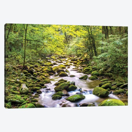 Creek Running Through Roaring Fork In Smoky Mountains Canvas Print #SMZ54} by Susan Schmitz Canvas Art