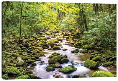 Creek Running Through Roaring Fork In Smoky Mountains Canvas Art Print