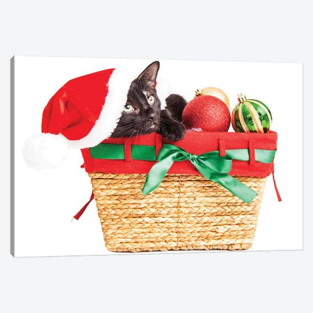 Cute Kitten In Christmas Basket Canvas Print #SMZ61} by Susan Schmitz Canvas Art