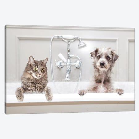 Dog And Cat In Bathtub Together Canvas Print #SMZ63} by Susan Schmitz Canvas Artwork
