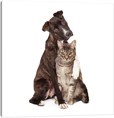 Dog With Arm Around Cat Canvas Art Print