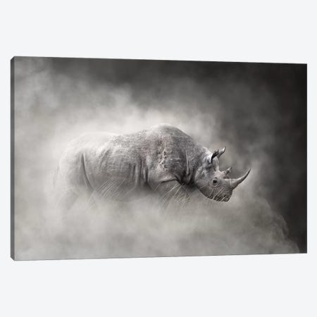 Endangered Black Rhino In The Dust Canvas Print #SMZ68} by Susan Schmitz Canvas Wall Art