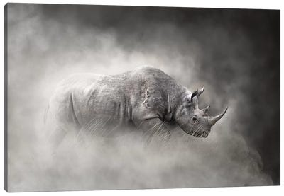 Endangered Black Rhino In The Dust Canvas Art Print