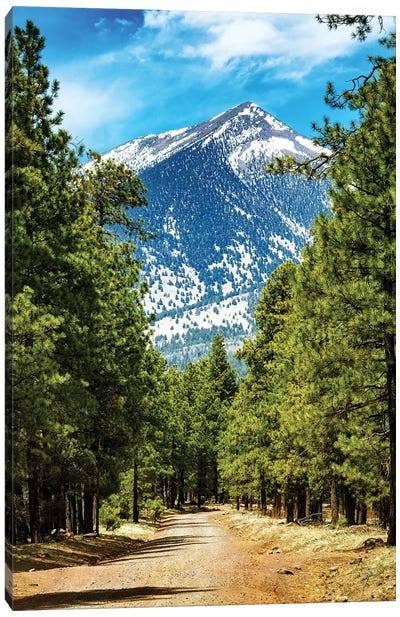 Flagstaff Arizona Road To Mountains Canvas Art Print
