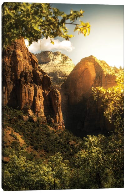 Golden Sunrise In Zion Canyon National Park Canvas Art Print