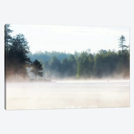 Misty Morning Lake At Sunrise Canvas Print #SMZ99} by Susan Schmitz Art Print
