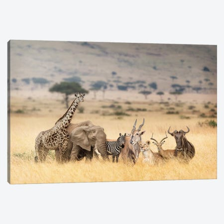 African Safari Animals In Dreamy Kenya Scene Canvas Print #SMZ9} by Susan Schmitz Canvas Artwork