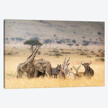 African Safari Animals In Dreamy Kenya Scene Canvas Print #SMZ9} by Susan Schmitz Canvas Artwork