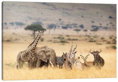 African Safari Animals In Dreamy Kenya Scene Canvas Art Print