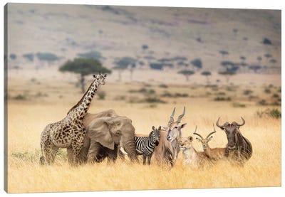 African Safari Animals In Dreamy Kenya Scene Canvas Art Print