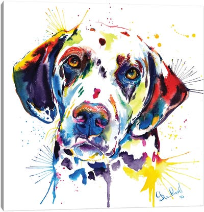 Dalmatian Canvas Art Print