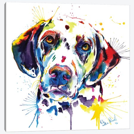 Dalmatian Canvas Print #SNA10} by Weekday Best Canvas Artwork