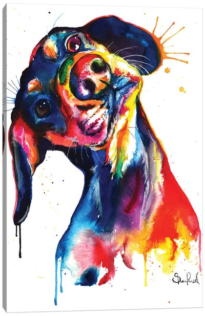 Dachshund Canvas Art Print