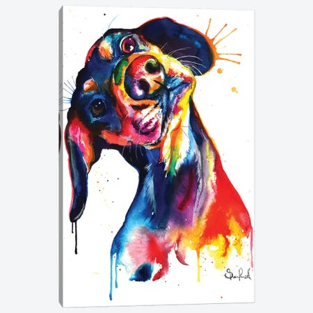 Dachshund Canvas Print #SNA11} by Weekday Best Canvas Art
