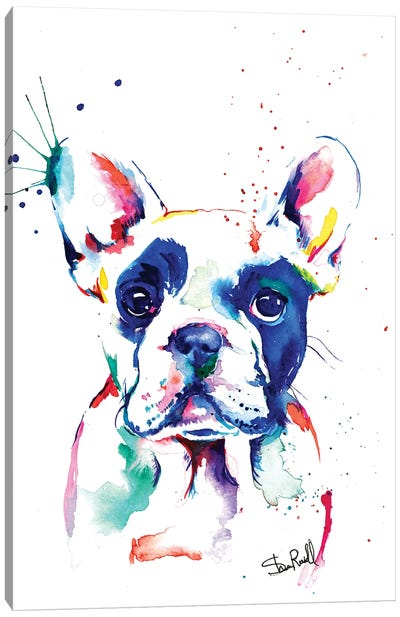 Frenchie I Canvas Art Print