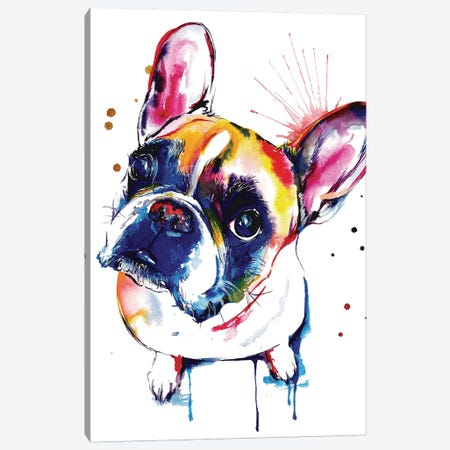 Frenchie II Canvas Print #SNA16} by Weekday Best Canvas Print