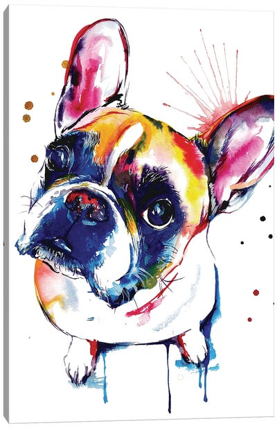 Frenchie II Canvas Art Print