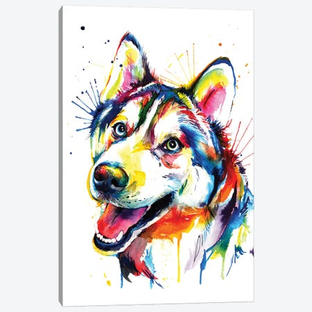 Husky Canvas Print #SNA17} by Weekday Best Canvas Print