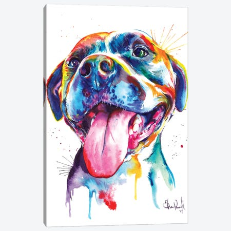 Pitbull Canvas Print #SNA19} by Weekday Best Canvas Art