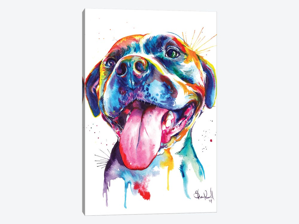 Pitbull by Weekday Best 1-piece Canvas Artwork
