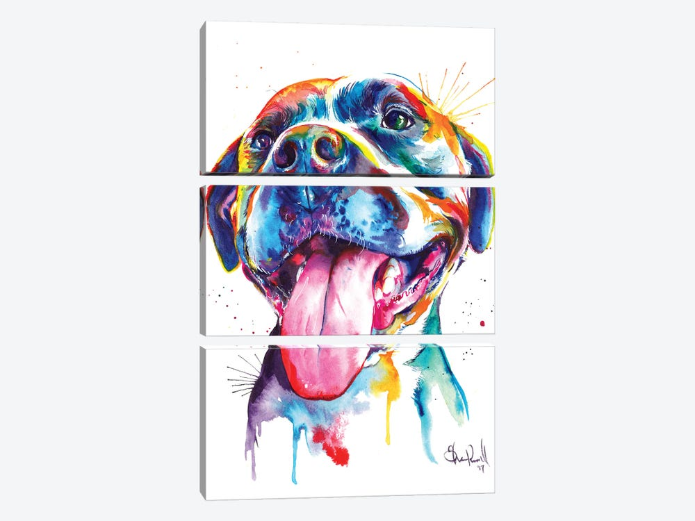 Pitbull 3-piece Canvas Wall Art