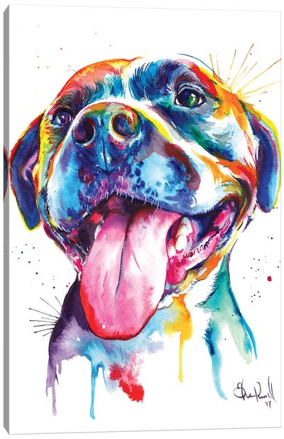 Pitbull Canvas Art Print