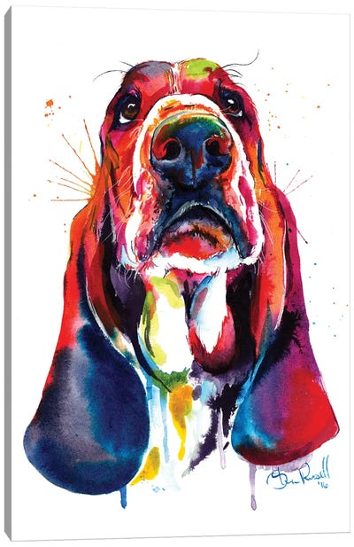 Basset Canvas Art Print