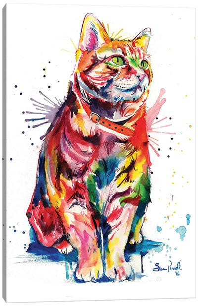 Tabby Canvas Art Print