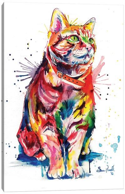 Tabby Canvas Art Print
