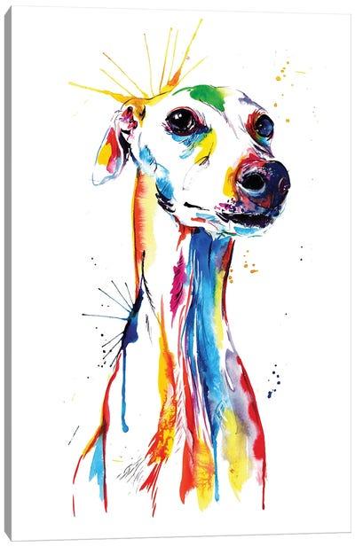 Whippet Good Canvas Art Print