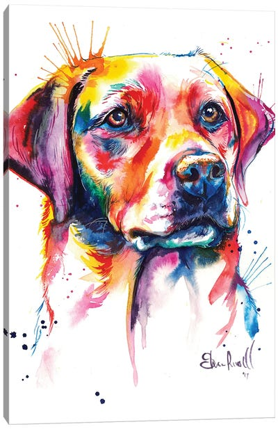 Yellow Lab I Canvas Art Print