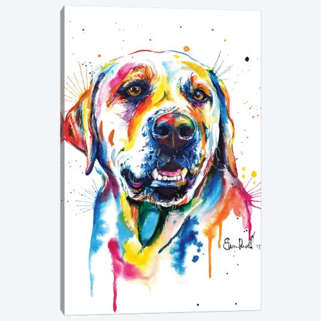Yellow Lab II Canvas Print #SNA27} by Weekday Best Canvas Art