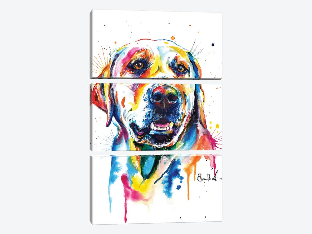 Yellow Lab II by Weekday Best 3-piece Canvas Print