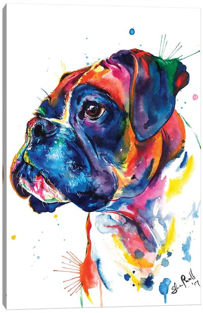 Boxer II Canvas Art Print