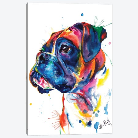 Boxer II Canvas Print #SNA31} by Weekday Best Canvas Art
