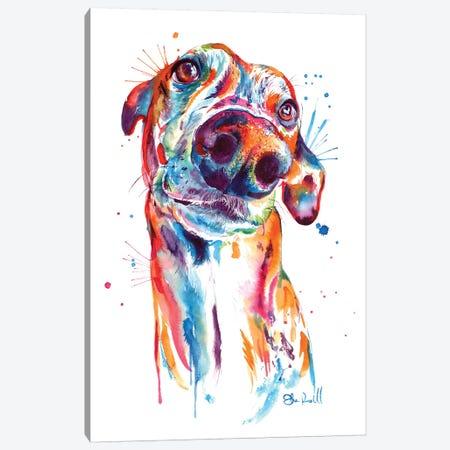 Greyhound Canvas Print #SNA34} by Weekday Best Art Print