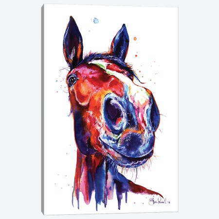 Horse Canvas Print #SNA35} by Weekday Best Art Print