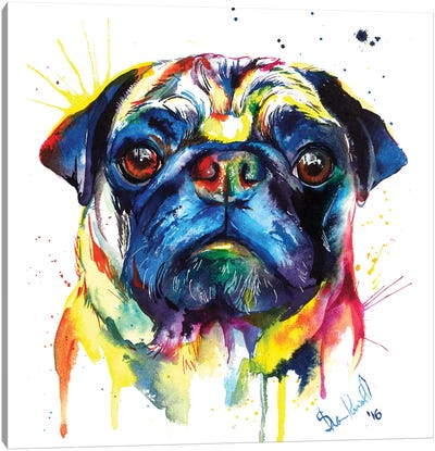 Pug III Canvas Art Print