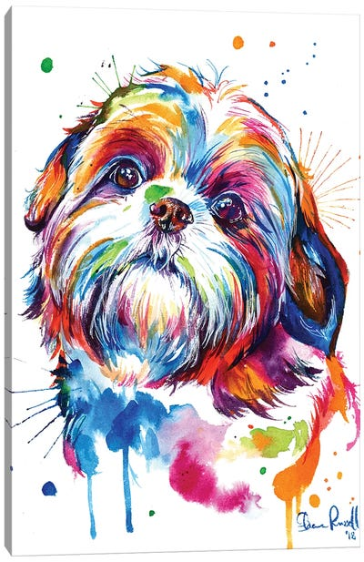 Shih Tzu Canvas Art Print