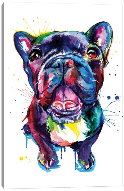 Black Frenchie Canvas Art Print