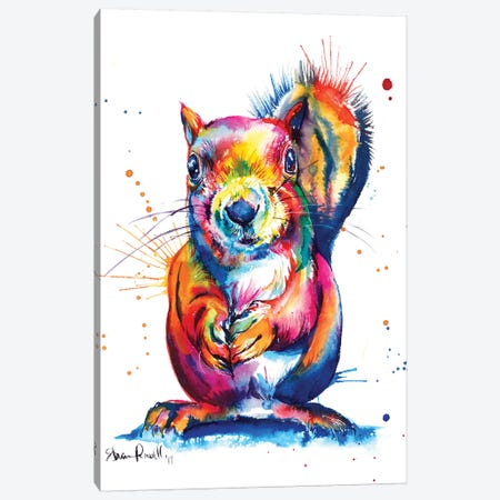 Squirrel Canvas Print #SNA40} by Weekday Best Canvas Art Print