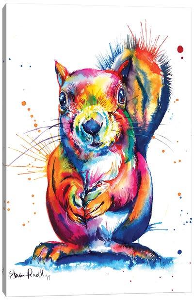 Squirrel Canvas Art Print