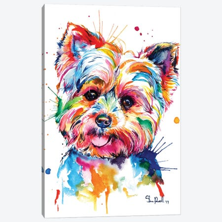 Yorkie Canvas Print #SNA41} by Weekday Best Canvas Art Print