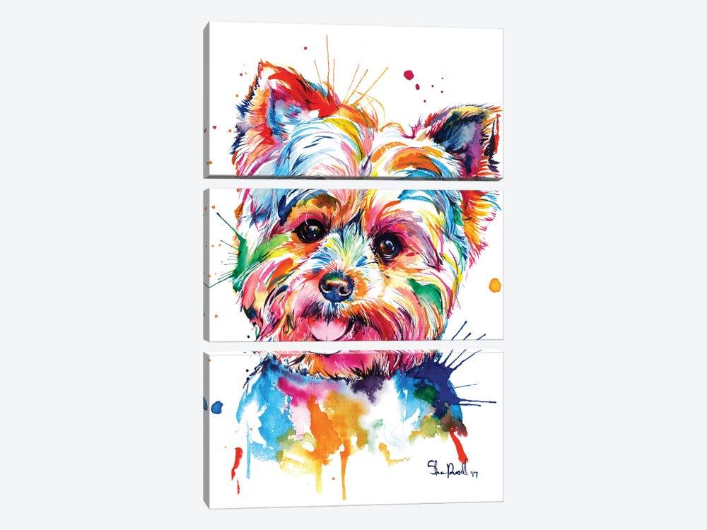 Yorkie by Weekday Best 3-piece Canvas Print