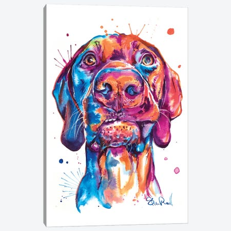 Vizsla Canvas Print #SNA43} by Weekday Best Canvas Art Print