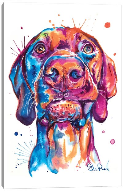 Vizsla Canvas Art Print