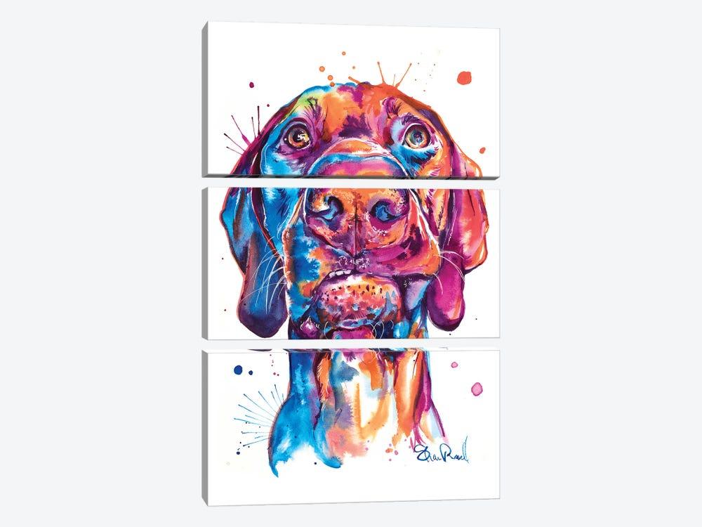 Vizsla by Weekday Best 3-piece Art Print
