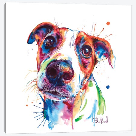 Jack Russel Canvas Print #SNA44} by Weekday Best Canvas Art