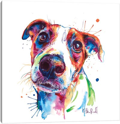 Jack Russel Canvas Art Print